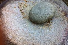 sementes-do-pasado03